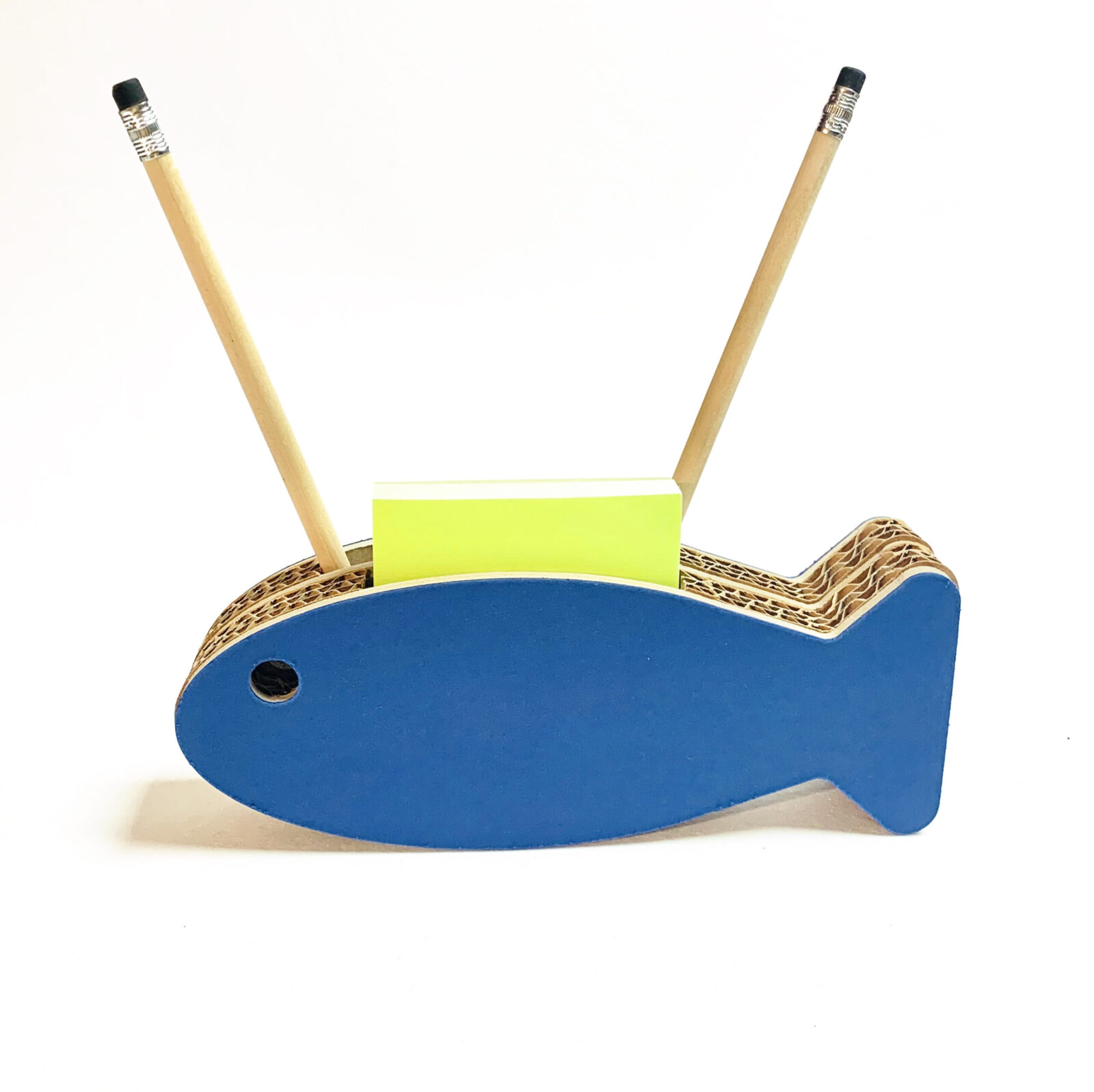 p. sardina blu.c
